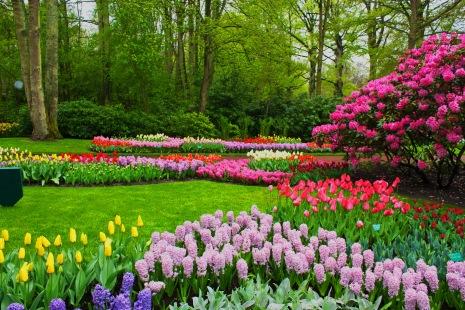 Park In Spring Desktop Background
